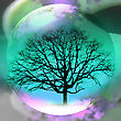 Abstract Background With A Transparent Sphere And Tree - stock photo