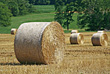 Stock Photo : Field Stock Photography: Agriculture - Field with Bales of Hay