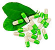 Stock Photo : Drugs Stock Image: Capsules Are Green, Two Green Leaf Isolated On White Background