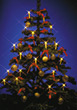 Stock Photo : Light Pictures: Christmas Tree & Lights