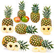 Collection Of Ripe Pineapples