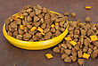 Stock Photo : Snack Pictures: Dog Food In Bowl On Wood Background