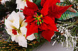 Decorated Holly Berry Red And White Flowers Closeup Image stock image