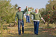 Stock Photo : Playful Stock Image: Parents Swinging Little Girl