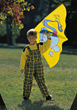 Small Boy In Park With Kite stock image
